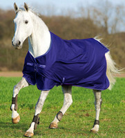 "Amigo Pony Hero 6 Medium Turnout Blanket, 45"" - 69"