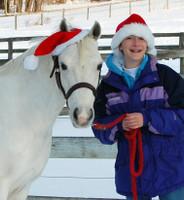 Holiday Horse Wear, One Ear Santa Hat