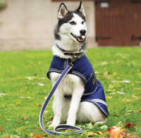 Horseware Amigo Waterproof Dog Blanket, Atlantic Blue/Ivory