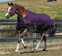 "Weatherbeeta Comfitec Plus Turnout Sheet, Purple/Black, 60"" - 69"""