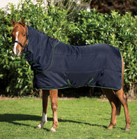 "Amigo Insulator Plus 200g Stable Blanket, 45"" - 69"""