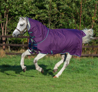 Amigo Bravo 12 Plus Pony Turnout Sheet, 45'' - 69''