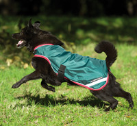 Rambo Waterproof Dog Blanket with Removable Liner, Navy/Red & Green/Red