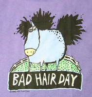 Bad Hair Day - Adult