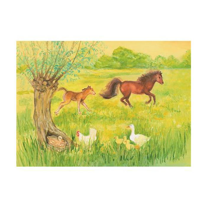 Frisky foal in the meadow postcard