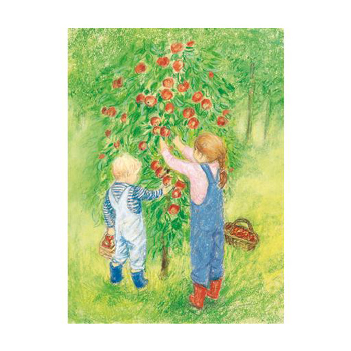 Apple Harvest postcard