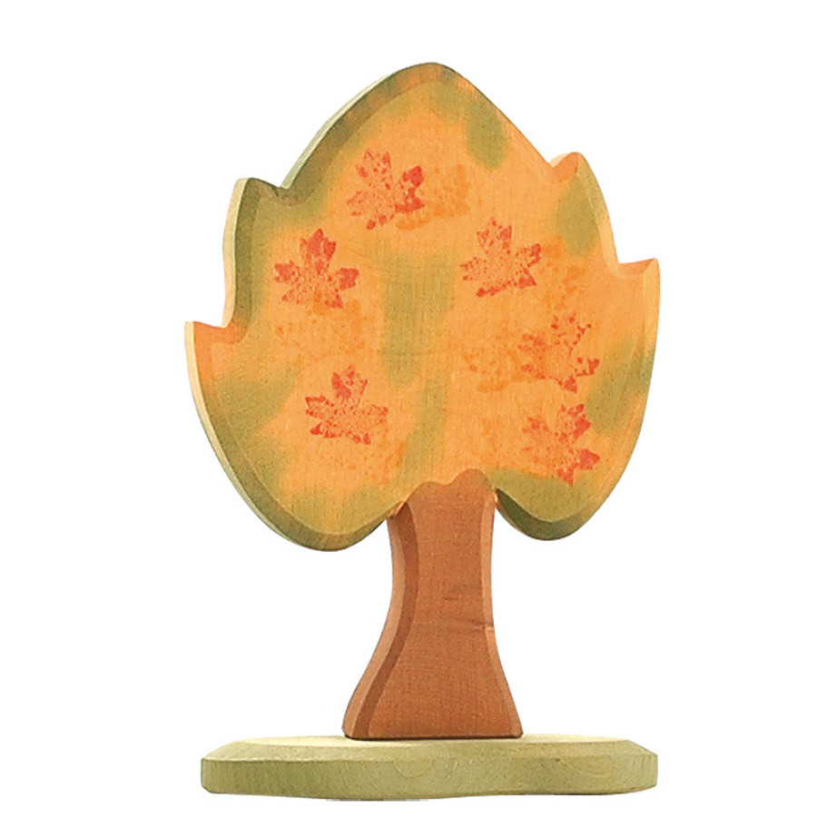Ostheimer maple tree with support