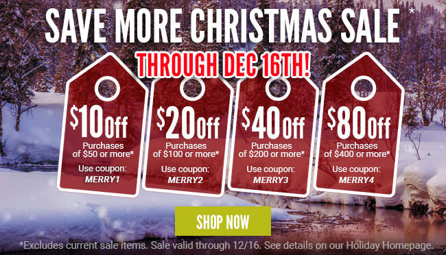 Save more Christmas Sale