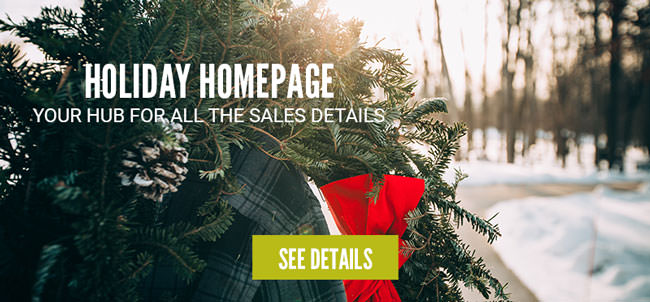 Holiday homepage sales info