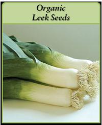 organic-leek-seeds-logo.png
