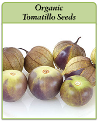 organic-tomatillo-seeds-logo.png