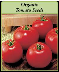 organic-tomato-seeds-logo.png