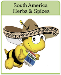 South America Herbs & Spices