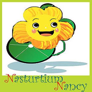 Nasturtium Nancy