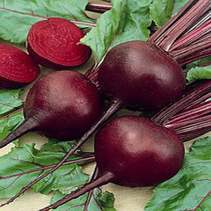 BEET DETROIT DARK RED