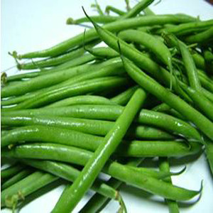 French Filet Serengeti (Alicante) Bush Bean