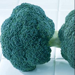Destiny Broccoli