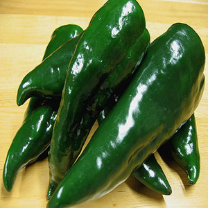 Ancho (Poblano) Hot Chili Pepper