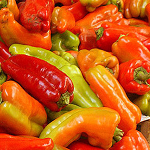 Cubanella Sweet Bell Pepper