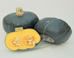 Buttercup Burgess Winter Squash
