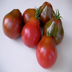 Black Pear OP Tomato