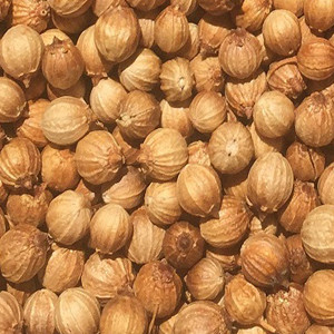 Coriander Seed Whole OG