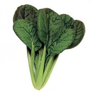 Misome Choho Leafy - Asian Vegetable