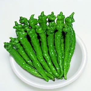 Pepper Sweet Fushimi- Asian Vegetable