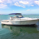 Cruiser Bimini Cover