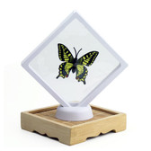 "3D Suspension Display Jewlry Gift Box 4 1/4"" x 4 1/4"" White"