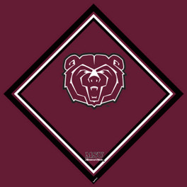 Missouri State University Cleaning Cloth