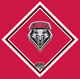 University of New Mexico Cleaning Cloth