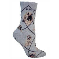Wheel House Bloodhound Socks