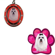 Bundle - 2 Items: Maltese Spinning Keychain and Paw Magnet
