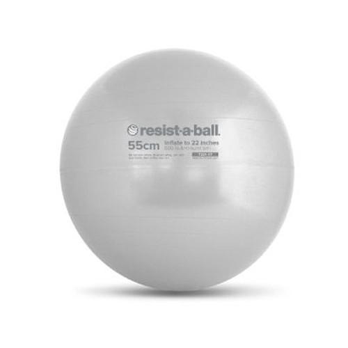 Stability Ball 55cm Silver