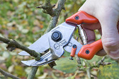 Ergonomic Anvil Pruner With Curved Blade