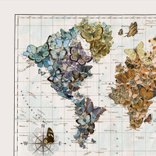 """""""Butterfly Migration"""" Lithograph Wall Map"""