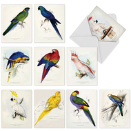 M6057 - Birds Of A Feather: Assorted Set of 10 Cards