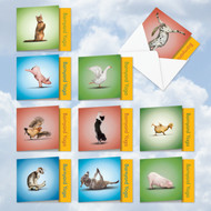 MQ4065OC - Barnyard Zen: Square-Top Mixed Set of 10 Cards