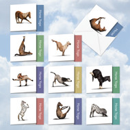 MQ4171OC - Horse Yoga: Square-Top Assorted Set of 10 Cards
