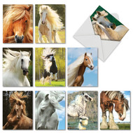 M4601OC - Magnificent Manes: Assorted Set of 10 Cards