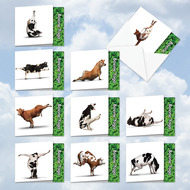 MQ6545OC - Bovine Nirvana: Square-Top Mixed Set of 10 Cards