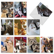 M4953TY - Cats Selfie: Mixed Set of 10 Cards