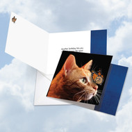 CQ4947BBD - On The Nose Tabby Cat: Square-Top Paper Card