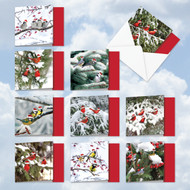 MQ5030XS - Christmas For The Birds: Square-Top Mixed Set of 10 Cards