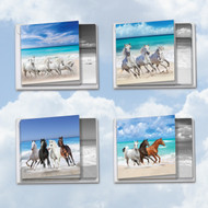 MQ5074OC - Gallops And Greetings: Square-Top Assorted Set of 12 Cards