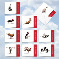 MQ6545XS - Cow Yoga: Square-Top Assorted Set of 10 Cards