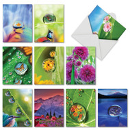 AM6111OC - Waterdrop Beauty: Mini Assorted Set of 10 Cards