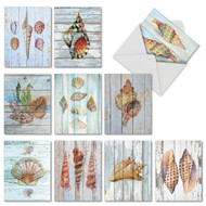 AM6118OC - Seashell Driftwood: Mini Mixed Set of 10 Cards