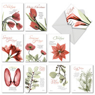 AM6219XS - Blooming Christmas Spirit: Mini Assorted Set of 10 Cards